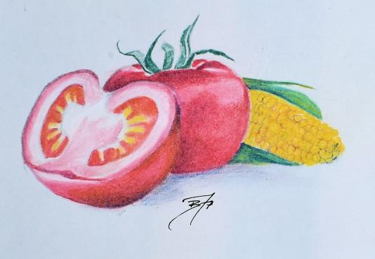 fish taco sketch.jpg