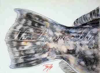 Site quality Flounder